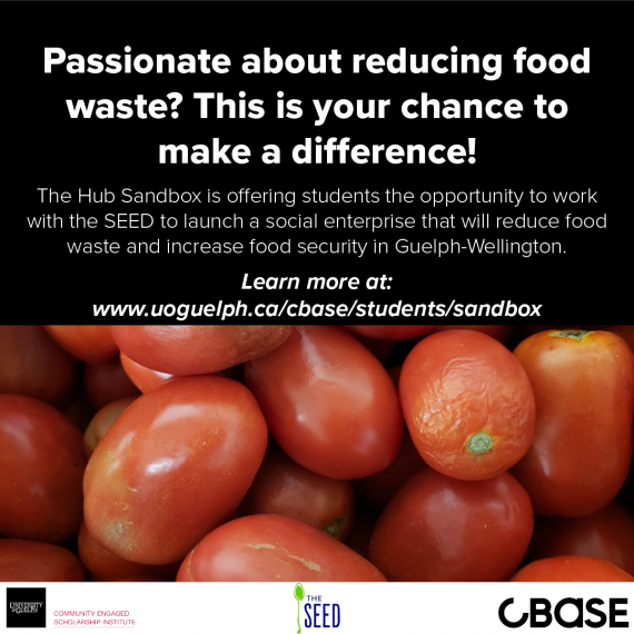 Poster promoting the Hub Sandbox program. Text invites students to apply for the entrepreneurship opportunity. Image shows a close-up of red tomatoes.